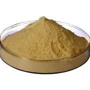 Пептон ферментативный фото