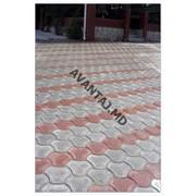 Тротуарная плитка, арт. 27 фото