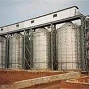 Обеззараживание зерновых культур. Альтернатива фумигации. Мировой опыт. фото