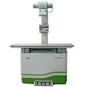 Стационарный ветеринарный рентгенографический аппарат HF-525plus Vet фото