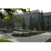 Синьзцянское Высшее Специальное Промышленное Учебное Заведение фото