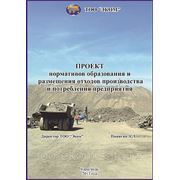 Проект нормативов образования отходов (НОО); фото