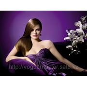 Ламинирование волос SEBASTIAN фото