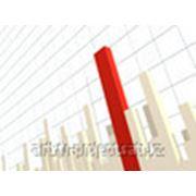 Бизнес-план инвестиционного проекта фото