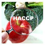 Сертификация системы управления качеством пищевых продуктов на основе принципов НАССР фото