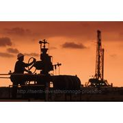 Бизнес-план нефтедобывающей и перерабатывающей отрасли фото