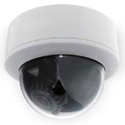 Антивандальная цветная купольная видеокамера DTC-WD213EF фото