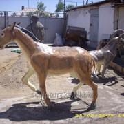 Скульптуры животных на заказ фото