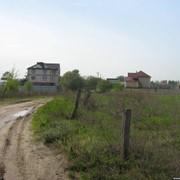 Белогородка участок 10 соток. Риелтор: Василий фото