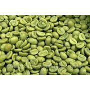 Зеленый кофе в зернах (100% Арабика, необжаренный) фото