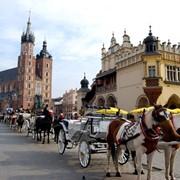 Визы в Польшу, визовая поддержка фото