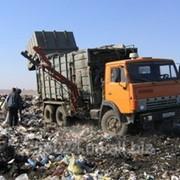 Сбор, вывоз, захоронение бытовых отходов фото
