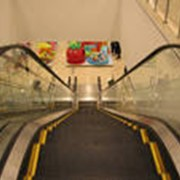 Монтаж лифтов, эскалаторов и травалаторов фото