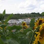 Вывоз строительных и негабаритных отходов. фото