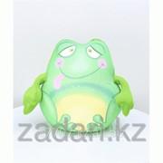 Игрушка Лягушонок Пончо фото