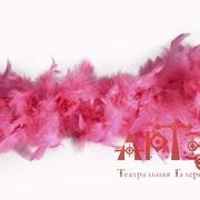 Боа розовое фото
