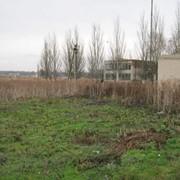 Земельный участок под застройку жилья 10с фото