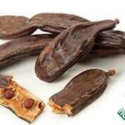Екзотични пряности Кероб (заминик шоколада) Индия фото