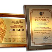 Дипломы наградные металлические фото