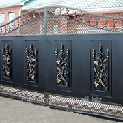 Ворота для дачи распашные с ковкой №43 фото