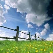 Продажа корпоративных прав действующего агробизнеса , с арендованной землей до 350-500 тысяч га. Возможны различные варианты. По Украине фото