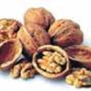 Орехи грецкие в Алматы фото