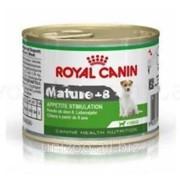 Консервы для собак Royal Canin Mature +8 Wet 0,195 кг фото
