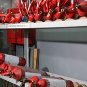 Техническое обслуживание и перезарядка огнетушителей фото