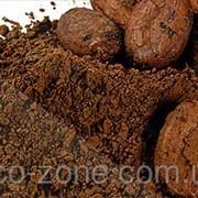 Какао тертое 250г фото
