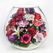 Стабилизированные цветы tm NFP BB-M1 фото