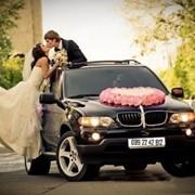 Свадебные услуги Черновцы. Аренда свадебного авто Черновцы. фото