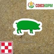 Престартер для свиней Пурина фото