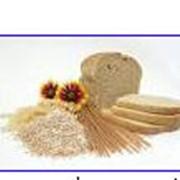 Продукция сельскохозяйственная.Тоговля зерновыми, мукомольной продукцией и др.: -пшеница; -кукуруза; -мука пшеничная от производителя; -сахар; -макуха и т.д. Зирнемлын, ЧП фото