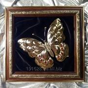 Золотая Бабочка фото