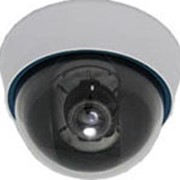 Видеокамера YR-801H2 LSVT фото