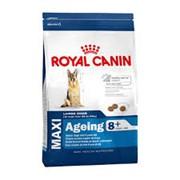 Корм для собак Royal Canin Maxi Ageing 8+ фото
