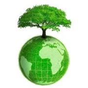 Экологический консалтинг фото