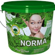 Краска акриловая Alina Paint Norma (протирающаяся) 3кг фото