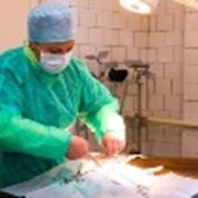 Услуги хирургические для животных фото