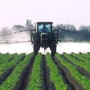 Средства защиты растений от сорняков гербициды фото