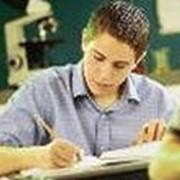 Школы и курсы языковые