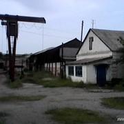 Продам кирпичный завод фото