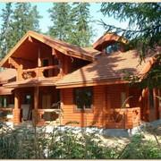 Сруб дома из оцилиндрованного бревна. фото
