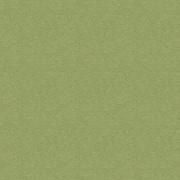Ткань мебельная Фактурная однотонка Kashemir Olive фото