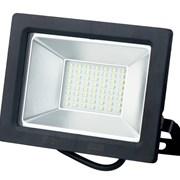 Прожектор светодиодный 50 Вт gauss LED IP65 6500К фото