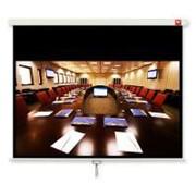 Проекционный экран Avtek Business 240 (1EVS57) фото