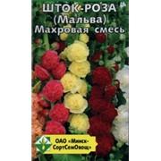 Шток-роза (Мальва) Махровая смесь фото