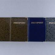 Обложка на паспорт Украины фото
