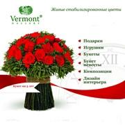 Стабилизированные цветы. фото