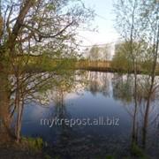 Земельный участок с небольшим прудом фото